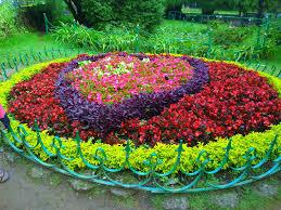 Beautiful Plants by Panoramio Photo Of Beautiful Plants Of Botanical Gardens