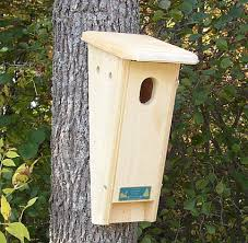 Free Printable House Blueprints Eastern Bluebird House Plans Free Western Bluebird Nestboxes
