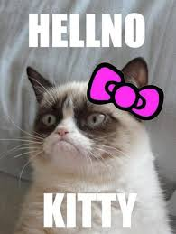 No Grumpy Cat Meme - hell no kitty grumpycat kitty grumpy cat and cat