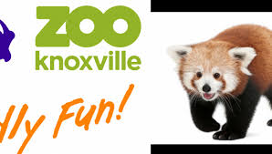 zoo knoxville in knoxville tn tennessee vacation