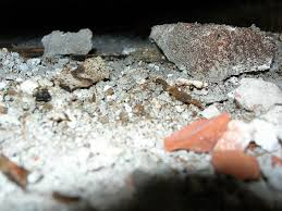How To Stop Mold In Basement by 11 Ways To Remove Mold In Basement Mold In Basement Prevention