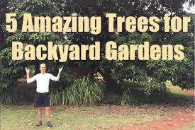 5 amazing edible trees for backyard gardening youtube