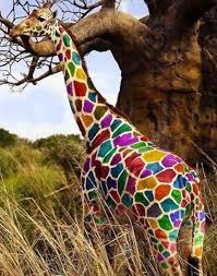 imagenes de amistad jirafas se busca jirafa invisible de muchos colores la torre del silencio