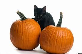 halloween transforminglifenow