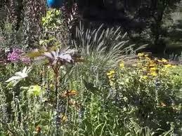 perennial flower garden tour august in wisconsin youtube
