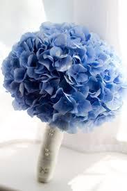 hydrangea bouquet image result for hydrangea wedding bouquet wedding