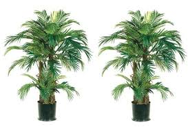 two 4 foot artificial palm trees potted plants