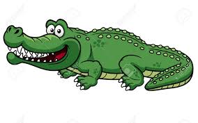 crocodile images u0026 stock pictures royalty free crocodile photos