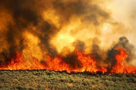 Wildfire Near Julian Ca by Banner Fire Started By Weed Clearing Equipemnt Know The Right Way