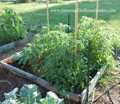 Garden Bed Layout 11 Tips For Designing A Raised Bed Vegetable Garden Layout