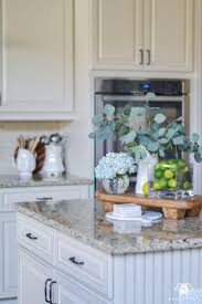 Cupcake Home Decor Kitchen 429 Best Decor Images On Pinterest Home Ideas And Live