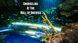 Map Of Mall Of America by Snorkeling At The Mall Of America Youtube