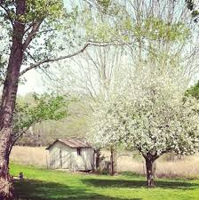 Country Farm House Tour This Rural Cottage Farmhouse Country Cottage Instagram