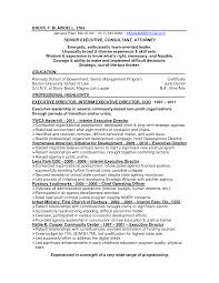 Resume For Non Profit Job by 100 Resume Templates Executive Resume Admin Assistant