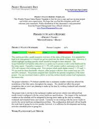 weekly progress report template project management 40 project status report templates word excel ppt template lab