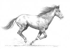 les 25 meilleures idées de la catégorie tatouages de chevaux sur