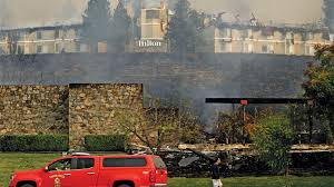 California Wildfires Pets by California Wildfires Threatening State U0027s Wine Tourism Industries