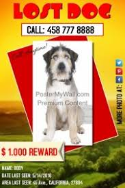 customizable design templates for lost pet poster template