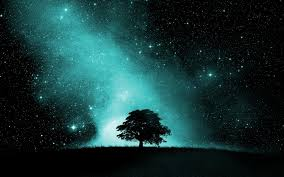 starry night sky full hd wallpaper and background 1920x1200 id