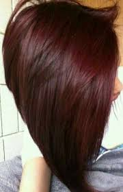 red brown long angled bobs long angled bob dark red hair hair trends i love pinterest