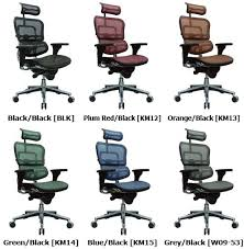 Ergonomic Chair And Desk Raynor Me7erg Ergohuman Chair