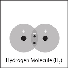 Atoms Bonding And The Periodic Table Multimedia Energy Levels Electrons And Covalent Bonding