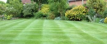 Big Backyard Ideas Backyard Design And Backyard Ideas - Landscape designs for large backyards