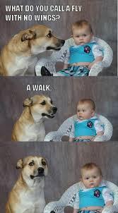 Dog At Vet Meme - dad joke dog image gallery know your meme