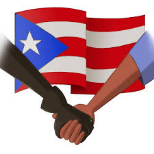 Puerto Rico Flag Image Cat Noir Shaking Hands With Puerto Rico Flag In Bg Jpg