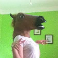 Horse Mask Meme - horse mask gif 18 gif images download