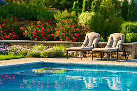 Backyard Trees Landscaping Ideas Interior Magnificent Beautiful Natural Swimming Pools New Jersey