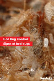 The Inn At Christmas Place Bed Bugs Best 25 Signs Of Bed Bugs Ideas On Pinterest Bed Bugs Signs