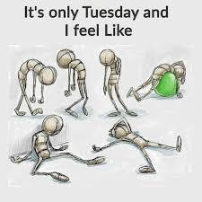 Tuesday Funny Memes - tuesday morning funny memes the random vibez