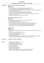 cashier resume template resume template cashier literarywondrous convenience