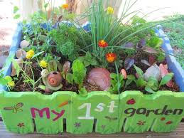 minature tray garden with veggie patch in shoebox garden ideas
