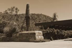 Arizona Travel Diary images Travel diary taliesin west tamara hubinsky interiors