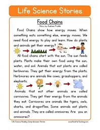 best 25 food chains ideas on pinterest food chain activities