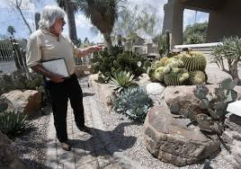 mineral dealer cultivates cactus and succulent collection tucson
