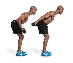 Full Body Dumbbell Workout No Bench The Best Dumbbell Only Triceps Workout Men U0027s Fitness