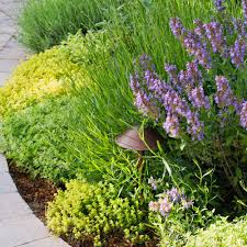 Landscaping Borders Ideas Spring Garden Borders Sunset