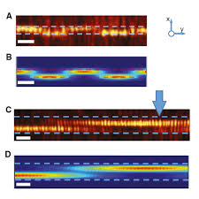 3 d near field imaging of guided modes in nanophotonic waveguides