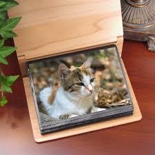 cat photo album personalized photo album for cats