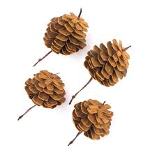 white pine cone pine cone ornaments in full grain leather