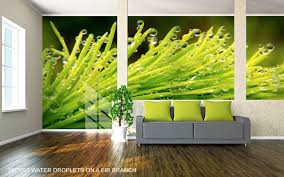 wall murals u0026 custom photo wallpaper murals your way