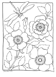 wild rose coloring page illustrated by marie browning