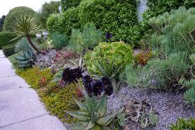 jeffrey bale u0027s world of gardens two drought and heat tolerant gardens