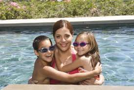 how to prevent water bugs in a swimming pool home guides sf gate
