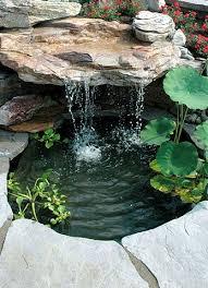Backyard Small Pond Ideas 25 Trending Small Ponds Ideas On Pinterest Small Fish Pond