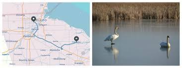 Ohio wildlife tours images 11 last minute winter trips from toledo ohio story matters jpg