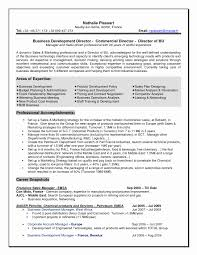 systems analyst resume doc business analyst resume sample doc best of senior business analyst